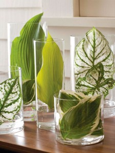 101577063.jpg.rendition.largest.jpg leaf display in cylindrical vases