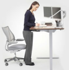 sitstand_category_stand.jpg Humanscale